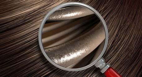 Saç Analizi İçin Yapılan Fiziki Muayene